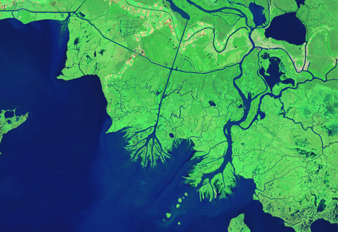 Bringing back the bayou: NASA helps Louisiana wetlands avoid bleak future