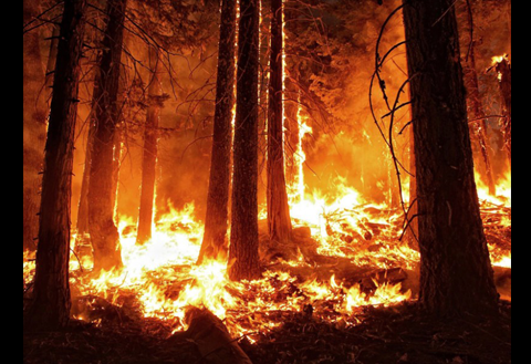 Assessing US Fire Risks Using Soil Moisture Satellite Data
