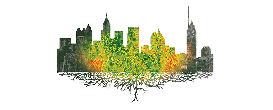 Earth observations help Atlanta manage water, urban forests