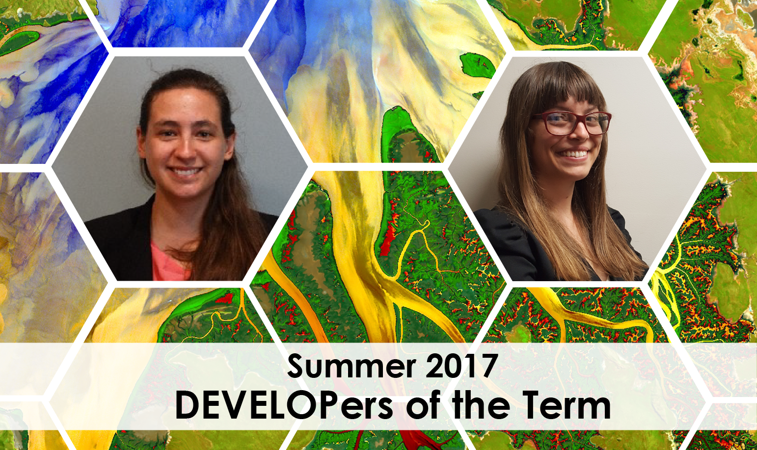 2017 Summer DEVELOPers of the Term